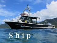 海メロのダイビング船