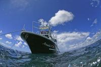 33.9:200:134:0:0:arukadexia2:right:1:1:アルカディア号で、かっこ良く海へ!:0: