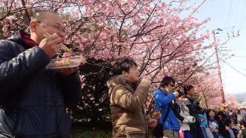 21.3:350:197:0:0:P2281357:right:1:1:桜を背にして 食べる人々w これも いとおかしなり(笑):0: